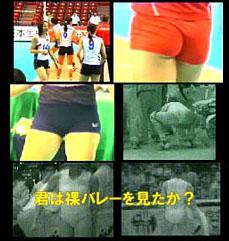 必撮スポーツ赤外線 透撮バレーボール1